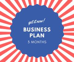 Business Plan Quarterly - 3 months - AVANA