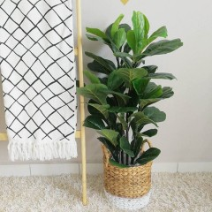 Artificial Fiddle Fig 90cm + Matilda Round Small Basket - KusyaHome- Scandinavian Furniture & Decoration Online Malaysia